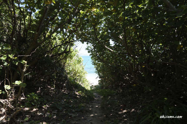 穴場ビーチの入口