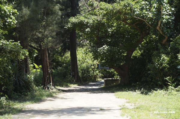 シルミチューに向かう道