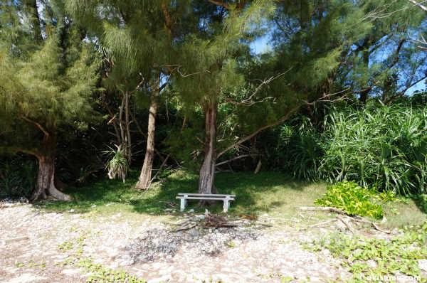 無人島にベンチ