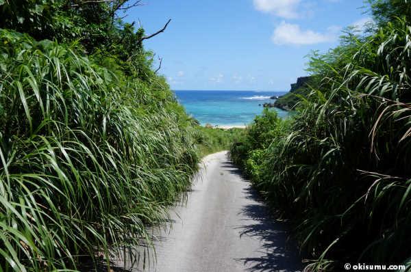 ウクの浜の道